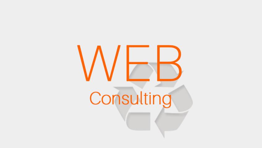 ウェブコンサルティング